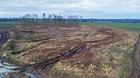 Die angebliche Klimaneutralität der Verbrennung von Holz