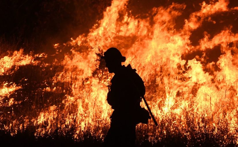 Die Waldbrände an der Westküste